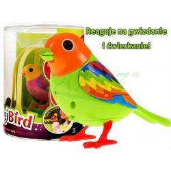 Digi Birds w Klatce - Śpiewający Ptaszek